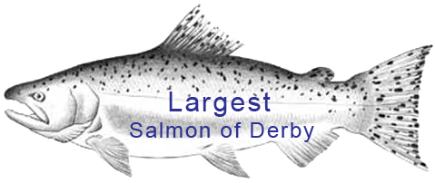 largest salmon winners